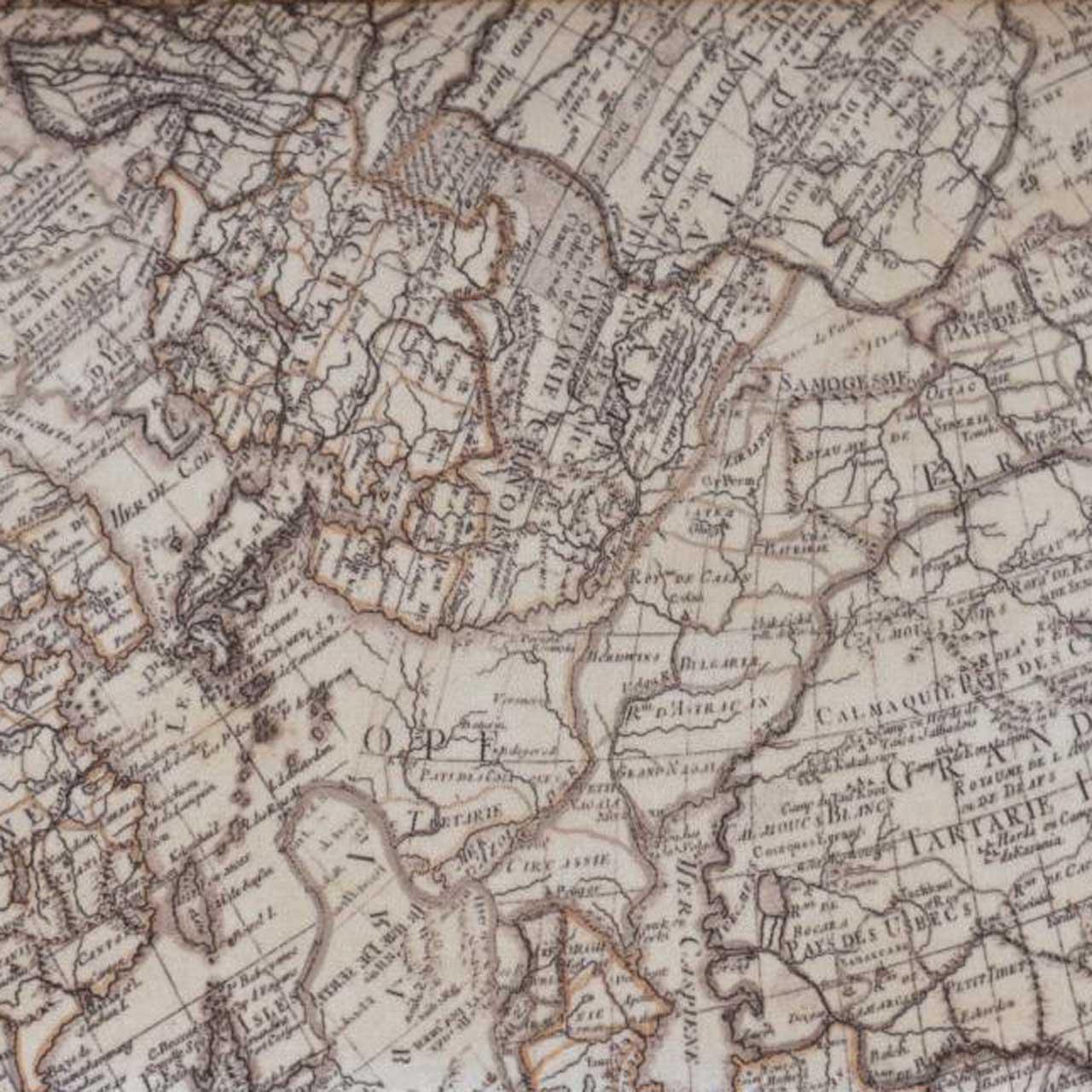VELVET WITH MAP PRINT